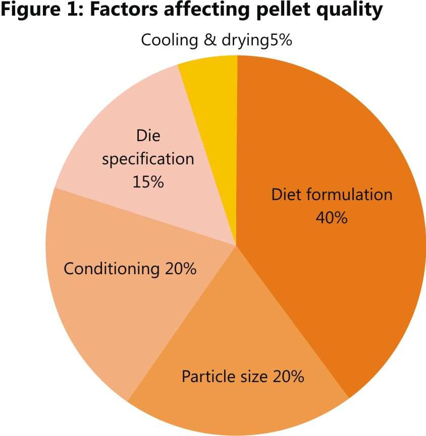 Impact of feed raw materials on pellet quality | Benison Media