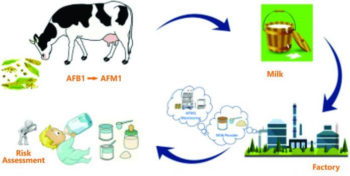 Aflatoxin_M1_in_Milk