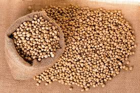 Soybean_images